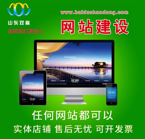 山东网页设计网站