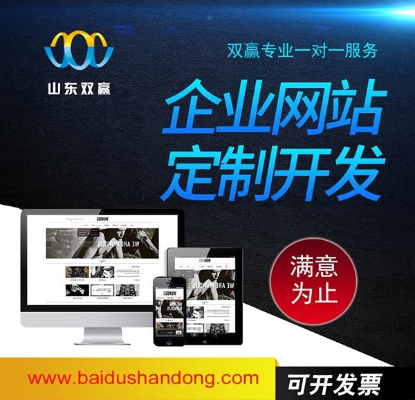 济阳网站克隆